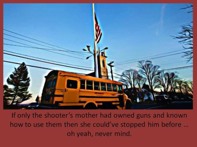 If only the shooter's mother had owned guns
