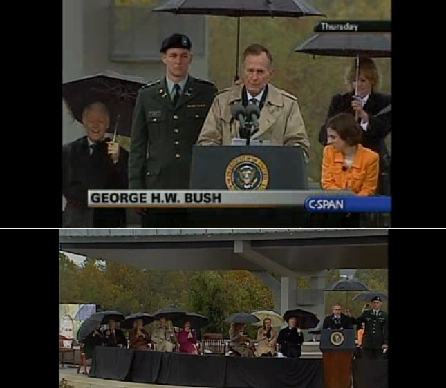 bush-bush-umbrella